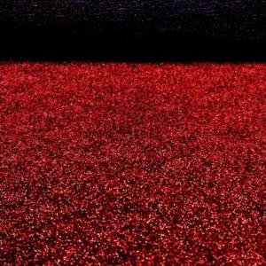 Metallic Rot Fasching Karneval